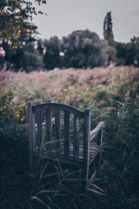 Lees meer over het artikel Als de stilte spreekt…